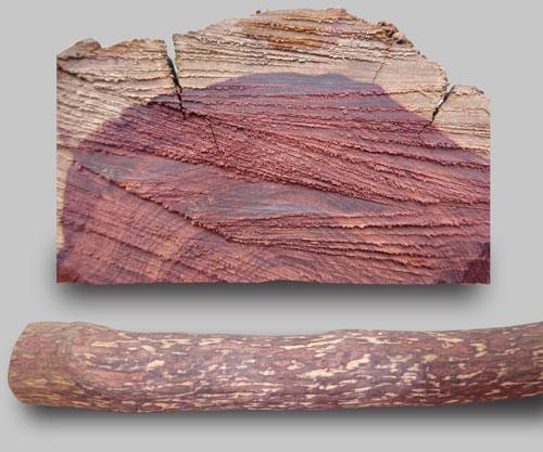 非洲紫罗兰酸枝木材实物图web